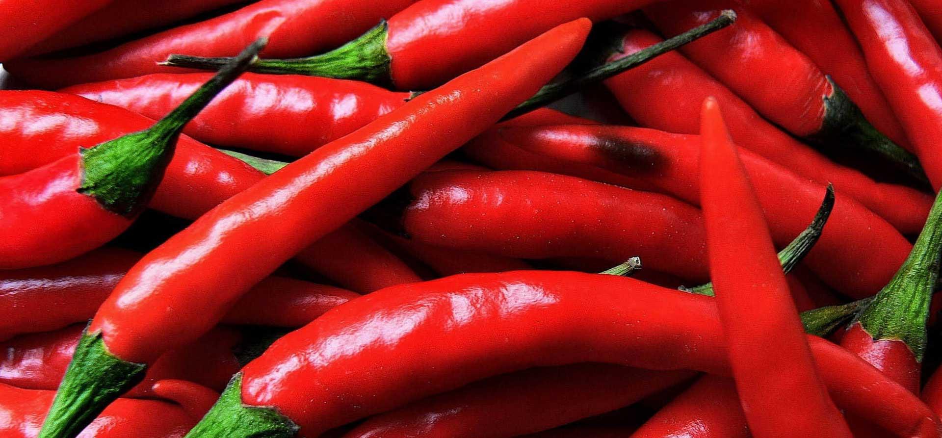 Peperoncino azienda agricola gandolfo filippone - Peperoncino pianta perenne ...